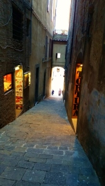 Just one of the many passages that leads to the Piazza del Campo.