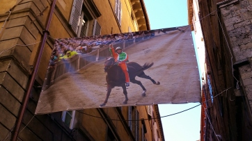 One of the riders of The Palio. I must attend this event. July or August.