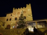 Christmas tree in Certaldo