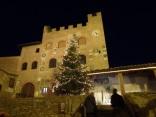 Christmas tree in Certaldo