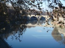 The Tevere. Almost looks like a mirror.