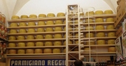 Just a few forms of Parmigiano Reggiano at La Baita, a well-known cheese shop in town, which is where we ate lunch.