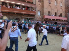 The Palio horse assignment