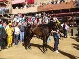 After the trial, Aquila's horse, jockey and contrada members meet and walk off the Piazza together. Every contrada does this.