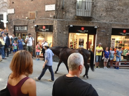 Taking the horse through the city streets, back to its stable.
