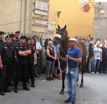 Waiting to enter the Piazza, contrada in tow.