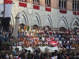 Oxen pull the cart carrying the Palio banner.