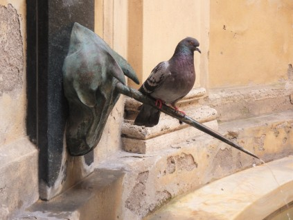 A bird finds a nice perch on the horn of the unicorn at the fountain in the unicorn contrada.