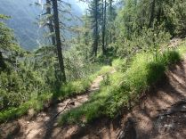 Our zig-zag trail. This was out hottest, and most humid, day of the week.