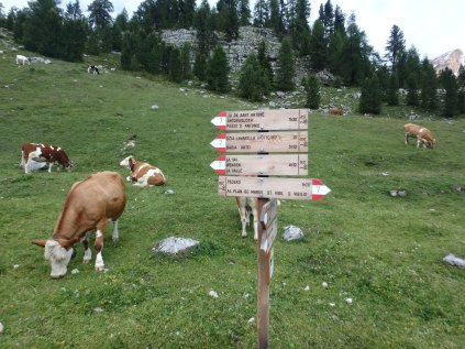 The scene. Those are trail markers. All of the trails in the Dolomites are very well-marked. And the area is incredibly well-maintained.