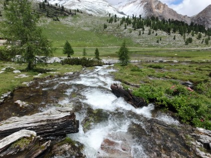 Snow-capped mountains, green pasture, evergreens and a stream.