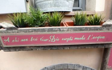 "Signs outside the Scaccia Pensieri wine bar. ""May whoever doesn't drink wine, be also denied water by God."""
