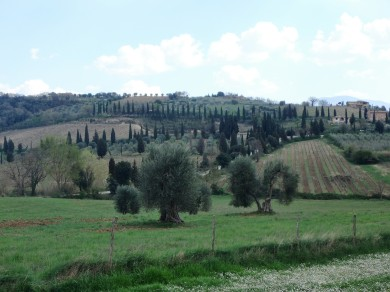 Castelnuovo dell'Abate, outside of Montalcino. The Tuscan countryside is just so beautiful.