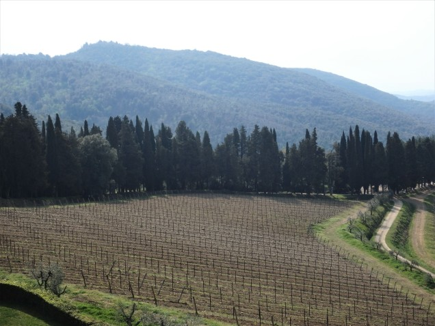 Outside of Castle Brolio