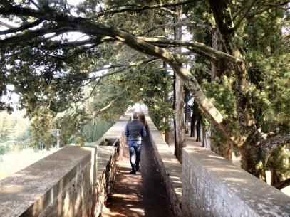 Dario walking along the perimeter of the castle