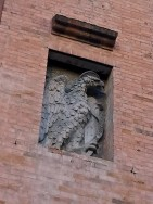 The eagle, or Aquila in Italian