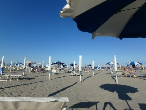 Nothing but umbrellas at the beach.