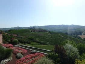 A view of the Barolo countryside
