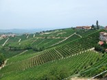 The Langhe