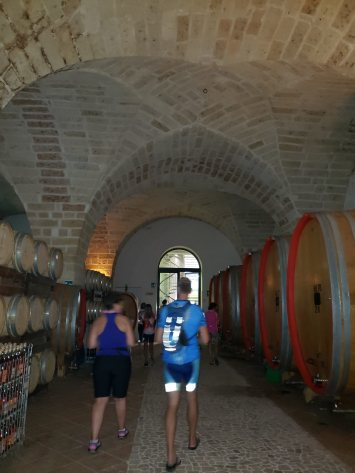 Me and Steve walking among the barrels